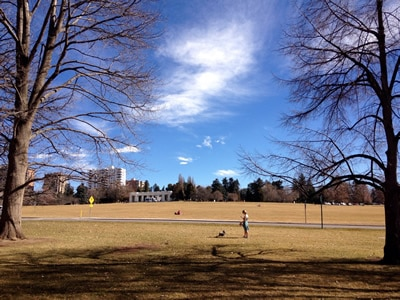 Cheesman Park in the Fall